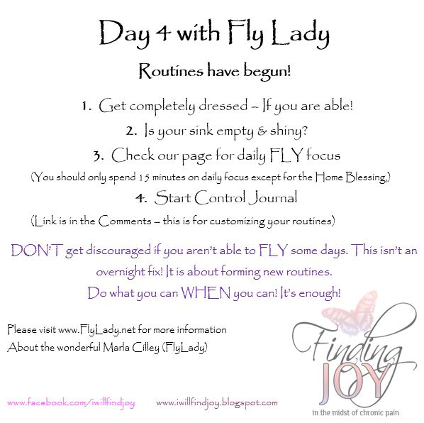 9 best flylady pdfs images on pinterest pdf flylady and organizers. Black Bedroom Furniture Sets. Home Design Ideas