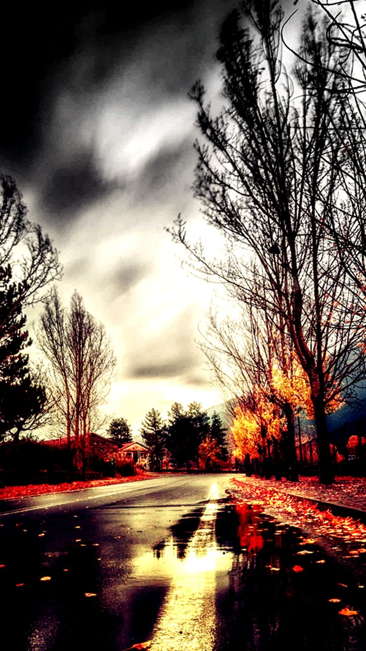 Road To Winter. Gradient light filter iPhone wallpapers