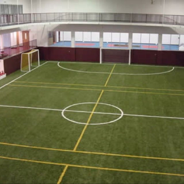 Mansion with indoor soccer field  I will have an indoor field at my home :) | Home in the future ...