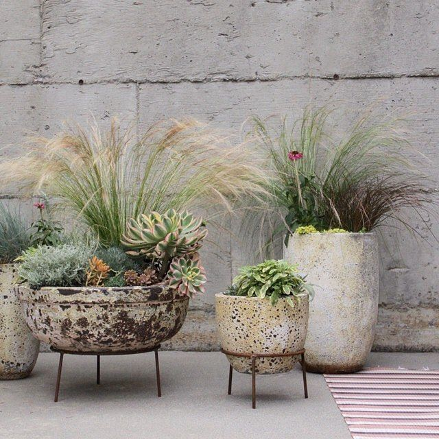 Hey /alexandrasklar/ -- you nailed it with these pots for /shopterrain/ ... All of them are on my holiday wish list! #gorgeous #gardenstyle