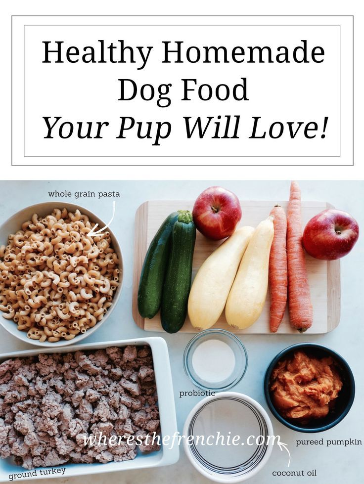 Diy Healthy Homemade Dog Food Dog Food Recipes Homemade Dog