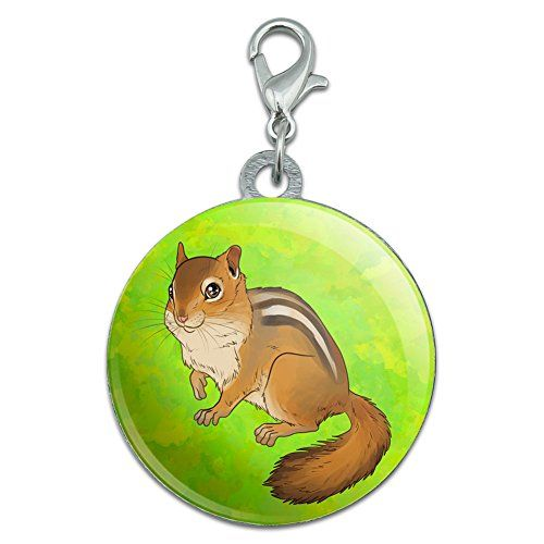 Chrome Plated Metal Small Pet Id Dog Cat Tag Zodiac: 10614 Best Bird Supplies Images On Pinterest