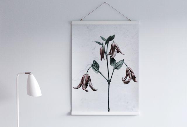 botanica poster