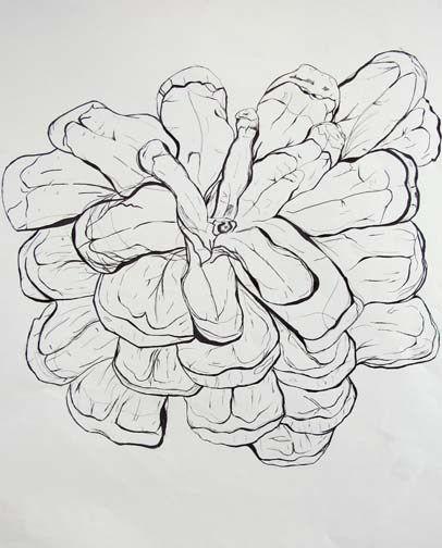 Contour Line Drawing Powerpoint : Best ideas about contour line on pinterest