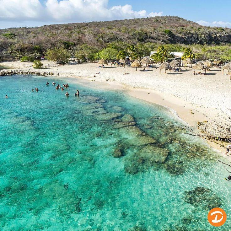 Ga je naar Curaçao? Ga zeker naar playa Daaibooi, hier komen de locals en vooral in het weekend zullen ze hier de BBQ aansteken. #dreizenvakanties #dreizen #vakantie #vakantiegevoel #genieten #ontspannen #travel#tip#reizen #reistip #bestemming #instatravel #beautifuldestinations #mustsee #holiday#vakantie#daaibooibeach#daaibooi#curacao#dutchantilles#nederlandseantillen#strand#snorkelen http://tipsrazzi.com/ipost/1505338334086694145/?code=BTkCT0-BAUB
