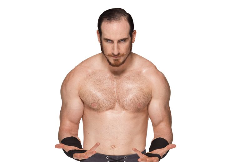 ... ideas about Aiden English on Pinterest   English, Schools and Has Have