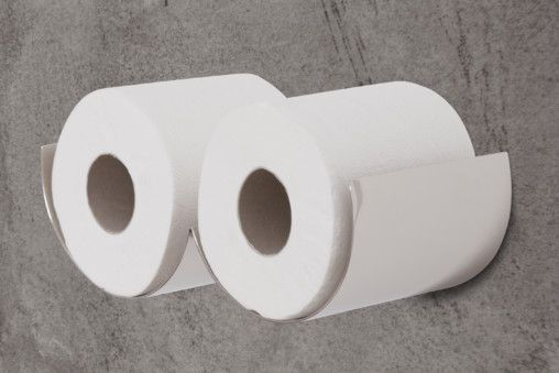 Toilet roll holders - nickel