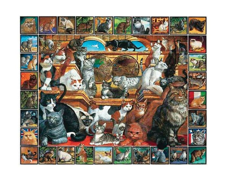 Jigsaw Puzzle 1000 Piece By White Mountain Factory Sealed 1998 The World Of Cats #WhiteMountain