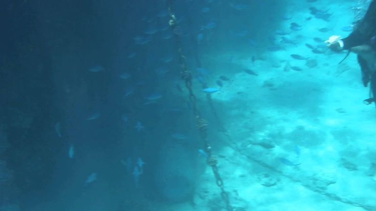 Подводный Мир Красного моря-2