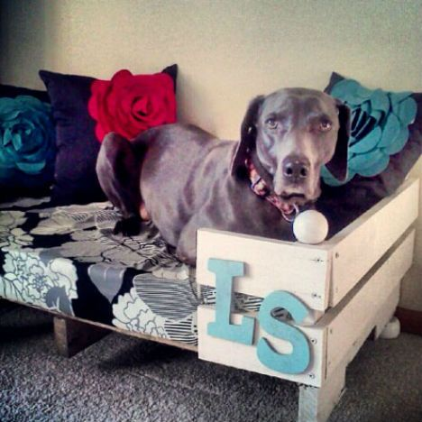 Pallet Projects! 15 More Reclaimed Furniture & Decor Ideas | WebEcoist ~Need to make this one for Layla!