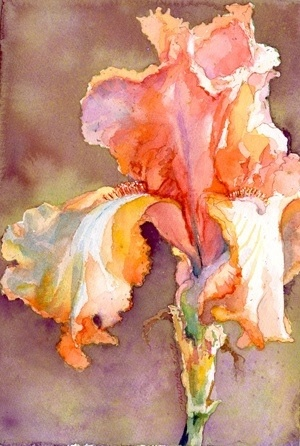 Tall bearded iris in an impressionistic style