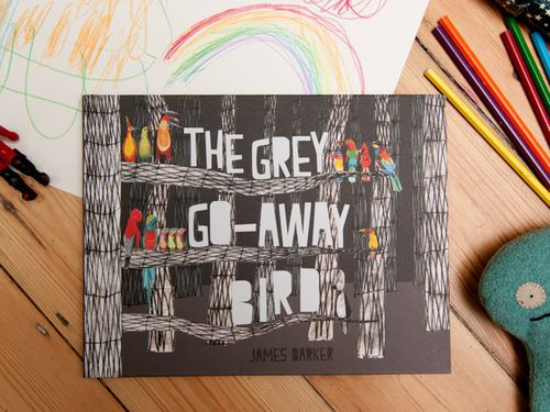 The Grey Go-Away Bird picture book