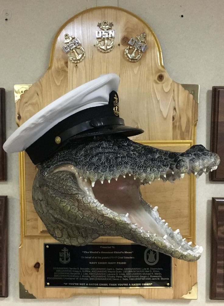 Gator Navy CPOA ; US Navy & US Marine Corps Senior Enlisted Mess Mascot. USS Iwo Jima Chief Petty Officer Association 2017