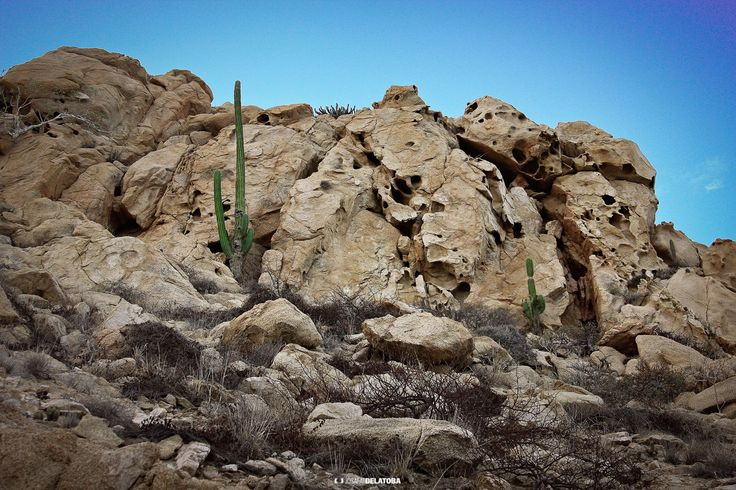 Rock formation in East Cape #josafatdelatoba #cabophotographer #loscabos  #eastcape #sanjosedelcabo #bajacaliforniasur #mexico #landscape