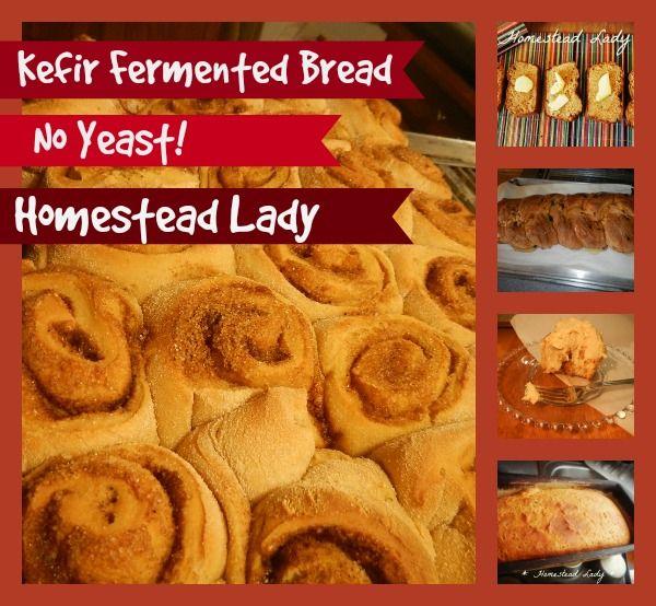 Kefir-Fermented-Bread-Dough-www.homesteadlady.com-you-can-make-cinnamon-rolls-loaf-bread-challah-breadsticks-and-more.jpg (600×554)