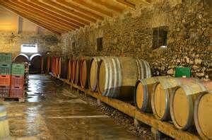 Corfu Wine Tasting Excursion