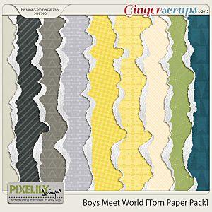Boys Meet World [Torn Paper Pack]