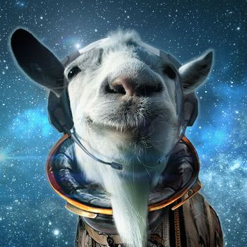 Goat Simulator Waste of Space Cracked IPA Game | BLAPPMARKET