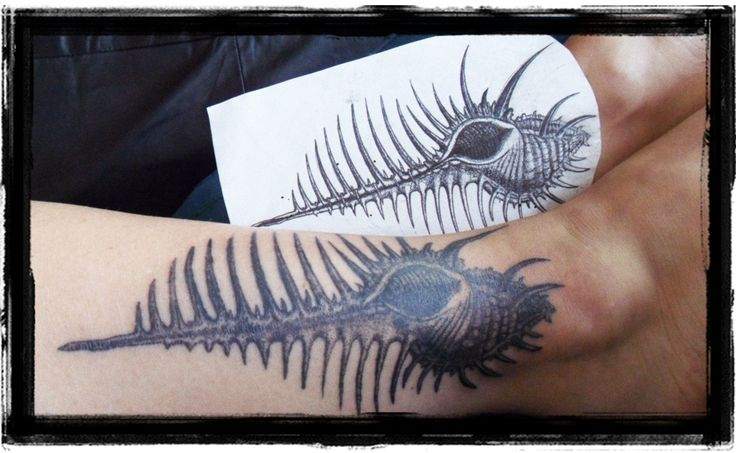Shell Dotwork Tattoo