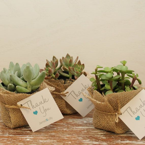 12 DIY Succulent Favors Thank You Tag ANY COLOR por thefavorbox