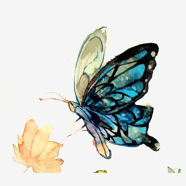 Butterfly Wings Transparent Blue Aesthetic Png Watercolor Ink Butterfly Colorful Png Transparent Clipart Image And Psd File For Free Download Butterfly Illustration Blue Aesthetic Butterfly Wings