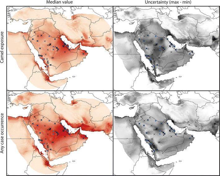 Ecological niche model outputs & #MERS cases/exposures
