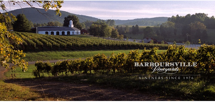 THE 10 BEST West Virginia Wineries & Vineyards (with ...