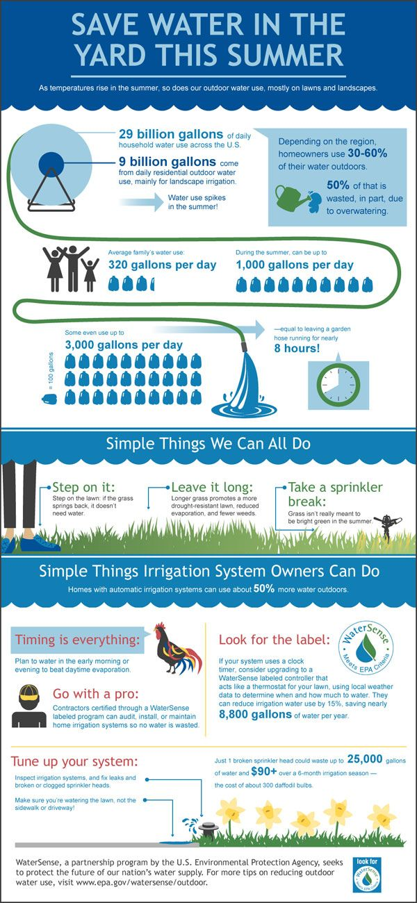Summer Water Conservation Tips