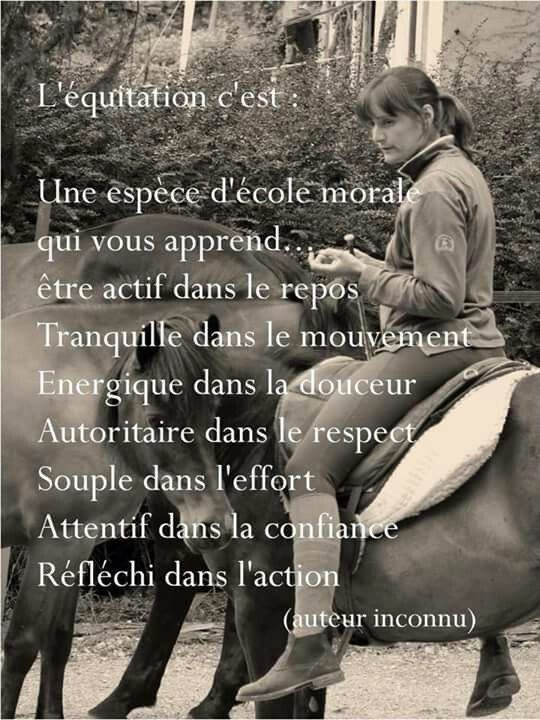 #equiequip #cheval #citations
