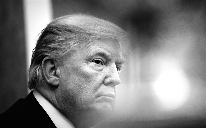 Download wallpapers Donald Trump, American president, USA, portrait, monochrome, 45th US President