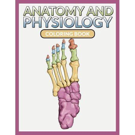 anatomy and physiology coloring book - Physiology Coloring Book