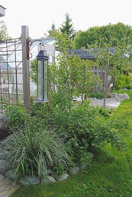 HANNAS: Växthus & Planteringsbord