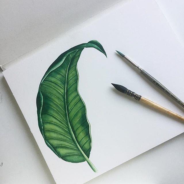 #future #pattern  #watercolor → https://patternbank.com/yuliyashora #botanicaldesign #patterndesign #topcreator #art_we_inspire #handdrawn…