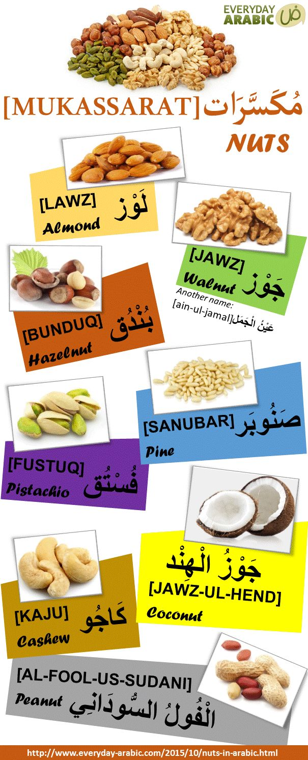 Types of Nuts in Arabic. Visit the website for audio for listening. #infographic