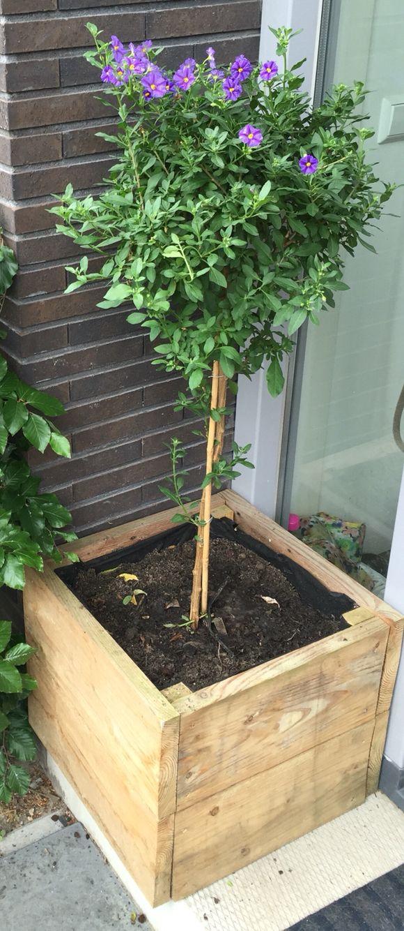 Plantenbak van Douglashout.   Kijk voor meer projecten op www.houtenplaatje.nl