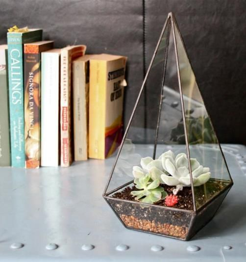 Make a small monument of your house plants by putting them inside this clear glass obelisk. #home #deco