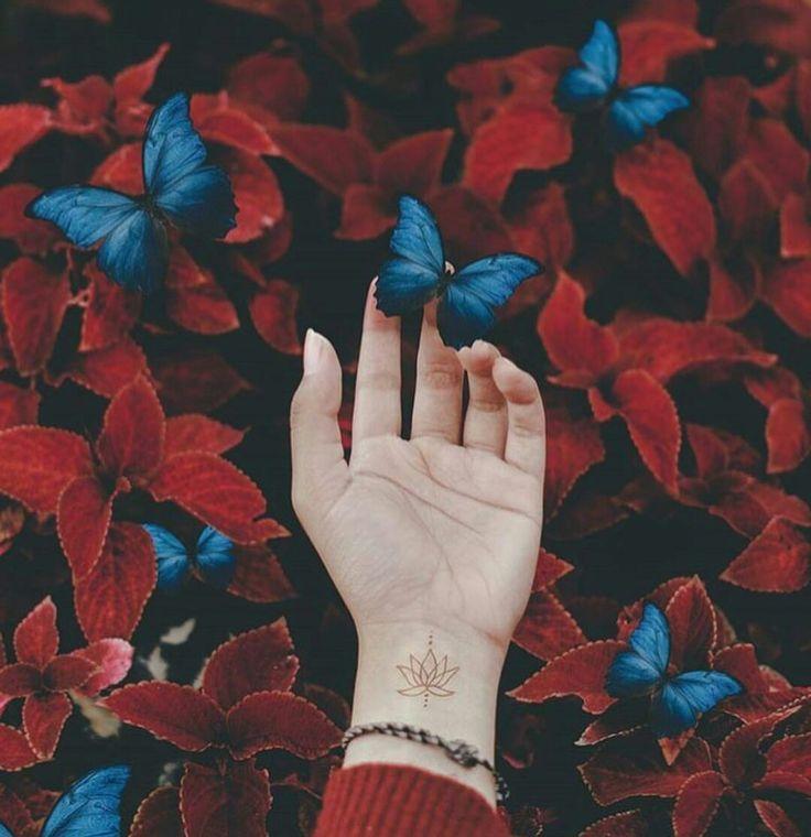 Kelebeklerlerlerrr Kelebeklerlerlerrr Https Wallpaperpinterest Com Kelebeklerlerlerrr Html Aesthetic Photography Blue Aesthetic Photography