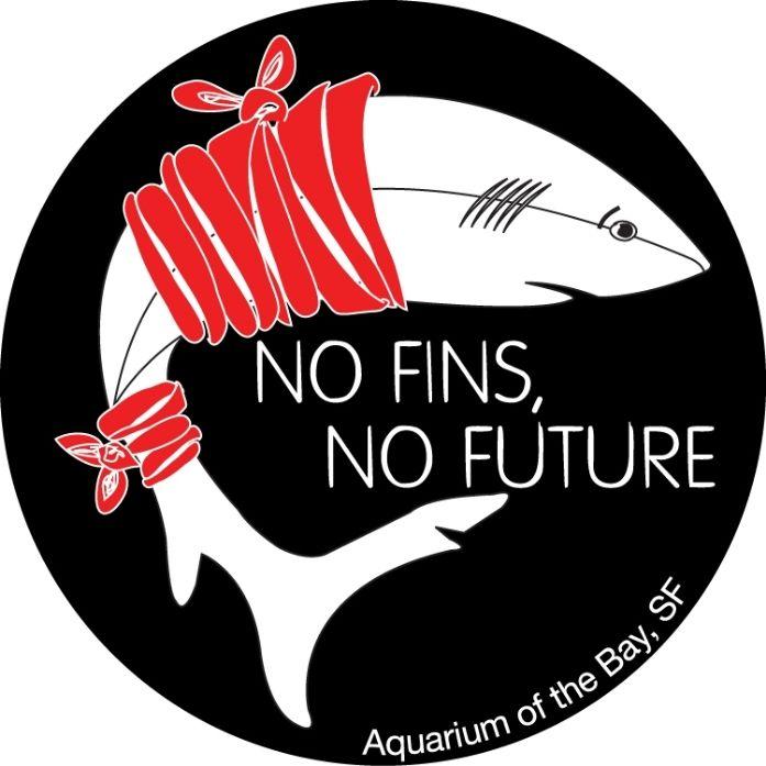 No Fins No Future Anti Shark Finning Campaign