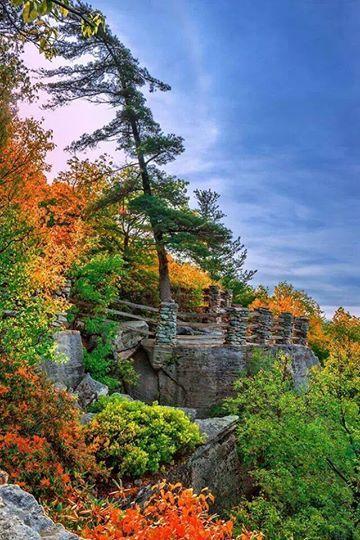 Cooper's Rock State Forest, Bruceton Mills, West Virginia  ༺ ♠ ༻*ŦƶȠ*༺ ♠ ༻