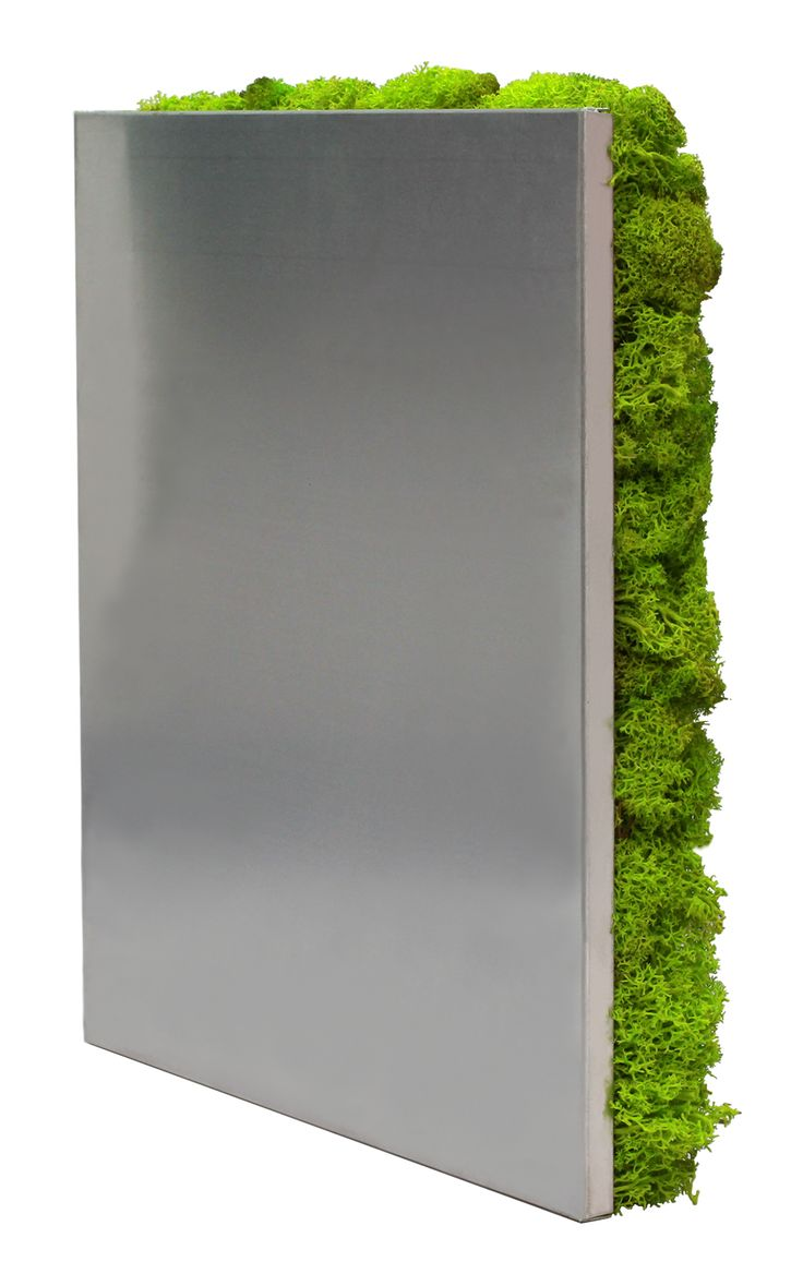 Livewall green wall system make conferences more comfortable - Scandia Moss Sm Panel Spring Green 300mm X 300mm X 40mm Scandia Moss Sm Panels