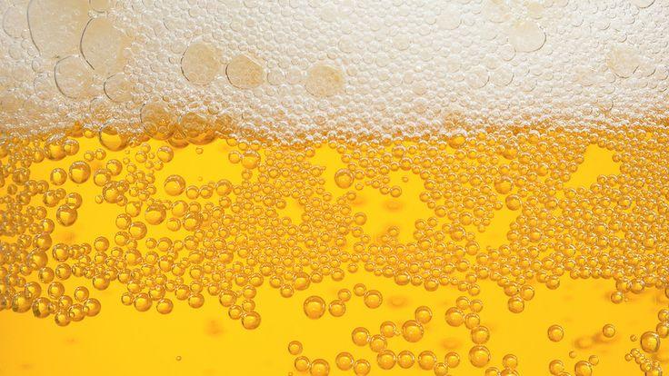 Sua eccellenza la birra francese, iniziativa per equipararla al vino | L'Abruzzo è servito | Quotidiano di ricette e notizie d'AbruzzoL'Abruzzo è servito | Quotidiano di ricette e notizie d'Abruzzo