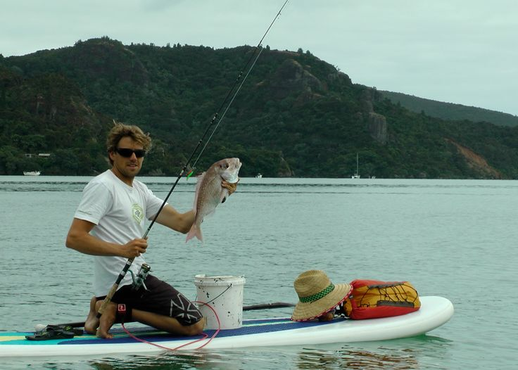 26 best images about sup fishing on pinterest trips for Sup fishing board