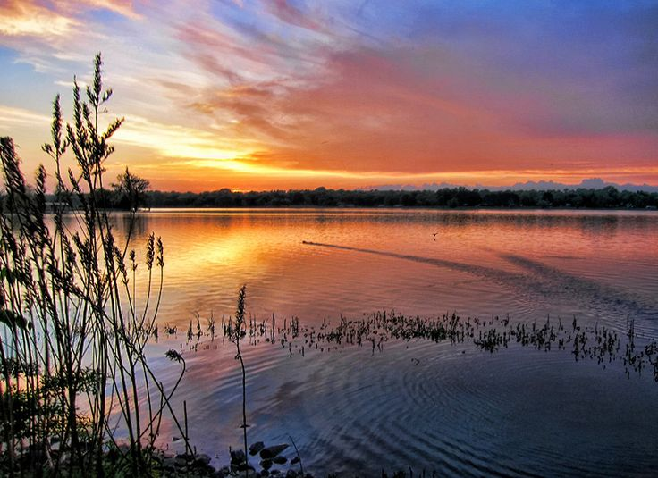 17 best images about old hickory lake on pinterest for Old hickory lake fishing