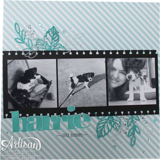 Creating a layout with photos and memories that fits into the Stampin' Up! Project Life Album ~ Chantal de Kaste
