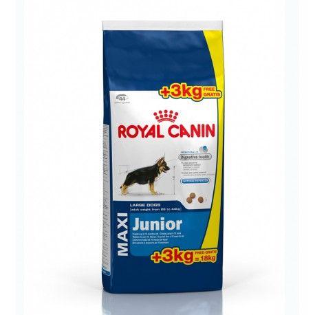 Royal Canin Maxi Junior Büyük Irk Yavru Köpek Maması 15 + 3 Kg Eko Paket  Yetişkin ağırlığı 26 kg'dan 44 kg'a kadar olan büyük ırk yavru köpekler (Örneğin: Labrador, German Shepherd, Boxer, Golden Retriever, Greyhounnds gibi) için 15 aylık olana kadar kullanılan yavru köpek mamasıdır.