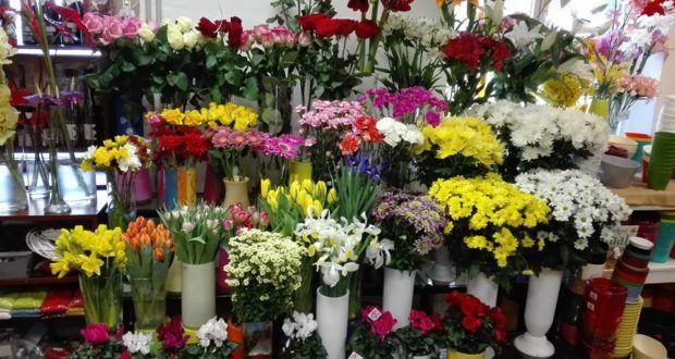 Něco více o květinách - radí odbornice a majitelka květinářství p. Silvie | Elegantní bydlení