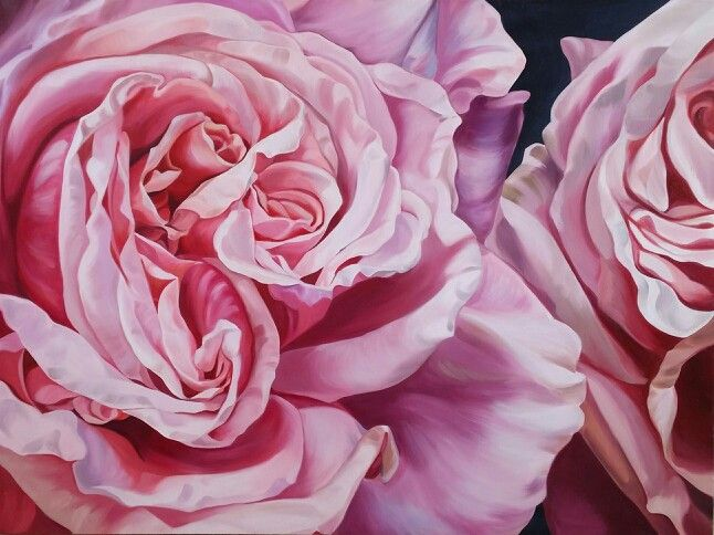Todays Feature Painting In My Pop Up Gallery Is A Beautiful Rose Variety Called Blossomtime This Delicate Pink With