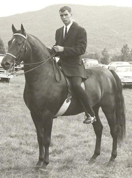 © Tamarack Hill Farm. Denny Emerson & classic Morgan horses.