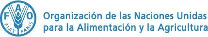 Magis Radio: Francisco en la 40ª Conferencia de la FAO