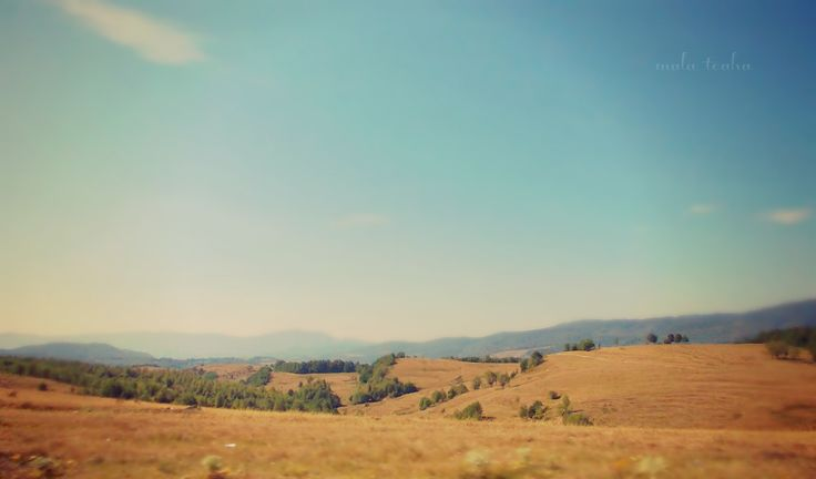 Zarand Land-Virfuri  Arad County, Romania